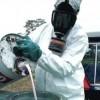 Équiterre - Pesticides